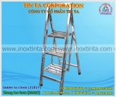 Stainless steel ladder to climb
